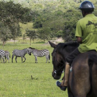 Horseback at Mihingo